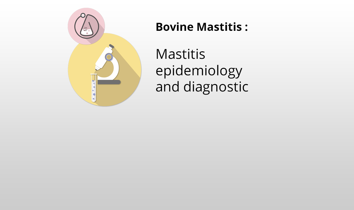 Mastitis epidemiology and diagnostic MASTBOV2.1
